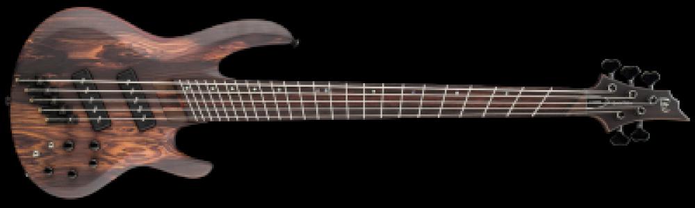 Welke gitaar moet ik kopen als beginner?
